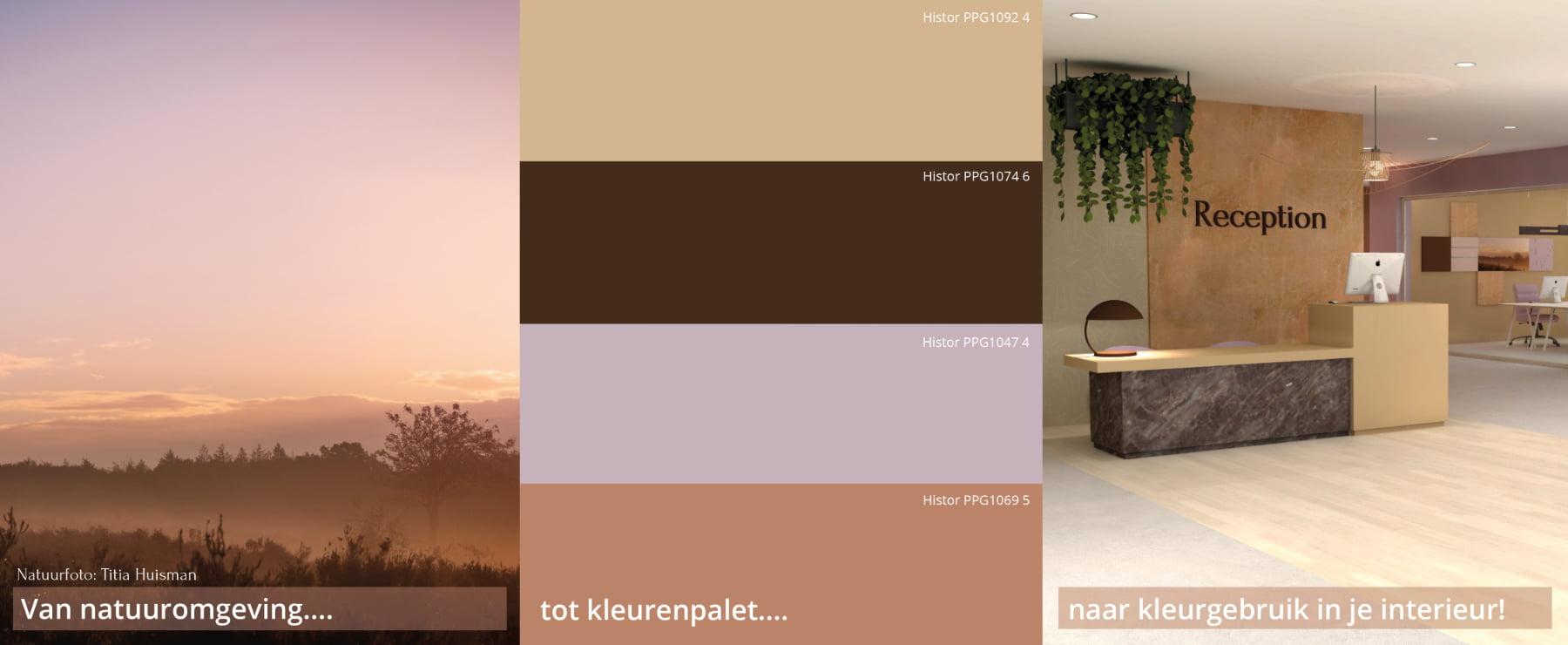 Natuuromgeving Kleurenpalet Interieurkleuren